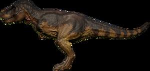 Rex Steppe
