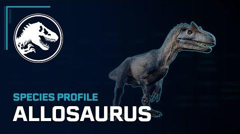 Species Profile - Allosaurus