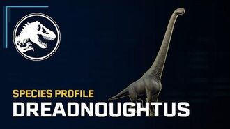 Species Profile - Dreadnoughtus
