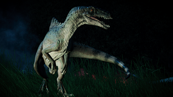 SpinoraptorNight