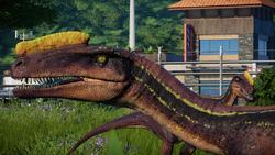 Jurassic World Evolution - Proceratosaurus 2