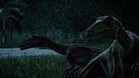 1579902319 Jurassic World Evolution Screenshot 2019.08.10 - 14.40.49.03