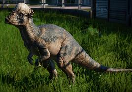 JWEPachycephalosaurus