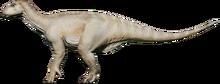IguanAlpine