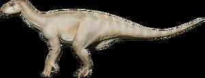 IguanAlpine.png