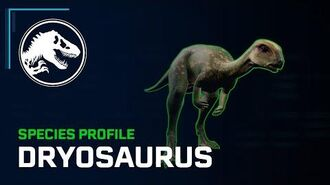 Species Profile - Dryosaurus