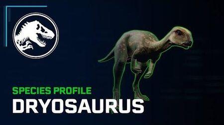 Species Profile - Dryosaurus
