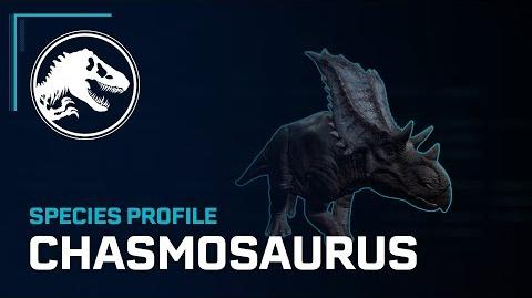 Species Profile - Chasmosaurus