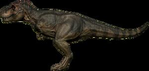 Rex Coastal