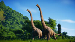 JWEBrachiosaurusPair