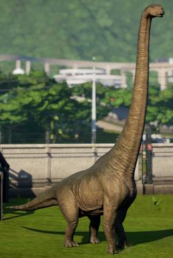 JWEDreadnoughtus