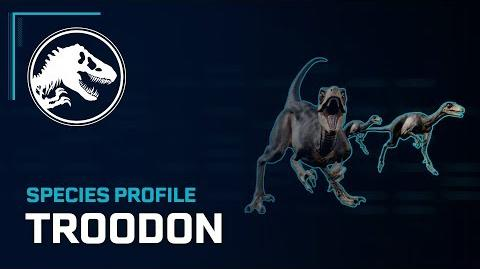 Species Profile - Troodon