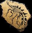Stegosaurusfossilicon