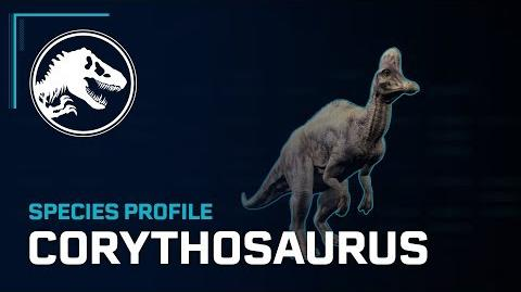 Species Profile - Corythosaurus