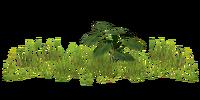 Grassingame