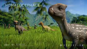 Jurassic-world-evo-Homalocephale 2