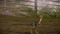 Jurassic World Evolution Super-Resolution 2019.12.13 - 19.06.15.11