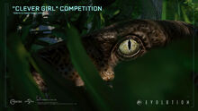 JWE Clever Girl Competition