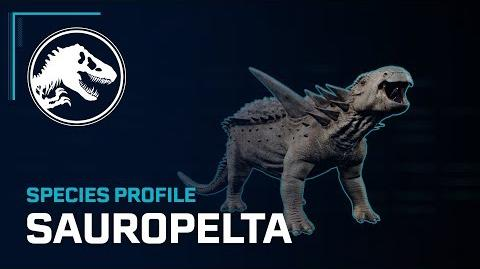 Species Profile - Sauropelta