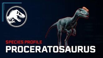 Species Profile - Proceratosaurus