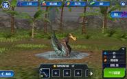 Tropeognathus2