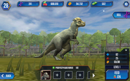 Pachycephalosaurus1