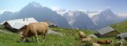 Switzerland-421471