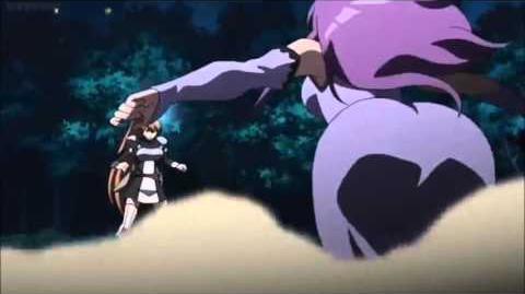 Akame ga Kill Sheele and Mine vs Seryu