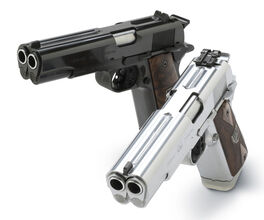 Double-barrel-pistols