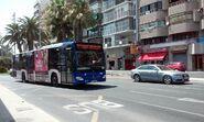 Alicante-bus