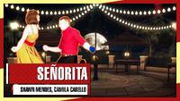 SenoritaTDAN thumbnail