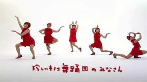 ハイパー♪アセロラ体操 WEB限定ムービー 珍しいキノコ舞踊団