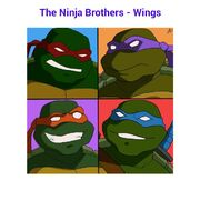 The Ninja Brothers - Wings