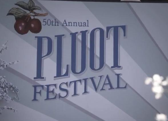 File:Pluot-festival.PNG