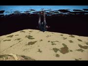 Circle Underwater