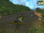 Isla Dominio airfield