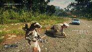 JC4 cow gun turns animals into Di Ravello
