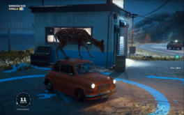 The Deer Car