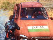 Dead D.R.M. in D.R.M. Stria Facocero