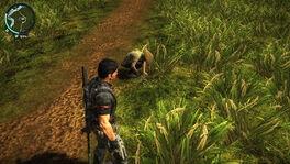 Farmer at Bandar Lubuk Paya