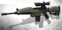Bull's Eye Assault Rifle