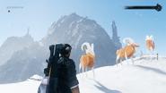 JC4 Three golden mountain goats