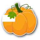 PumpkinSkin