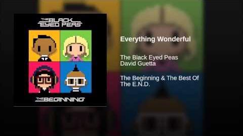Everything Wonderful (Bonus)