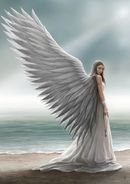 62579d6cc33106f3fde9c6e126185e95--anne-stokes-spirit-guides (1)