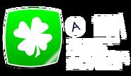 St.PatrickBadgeDisp