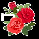 RosesSkin
