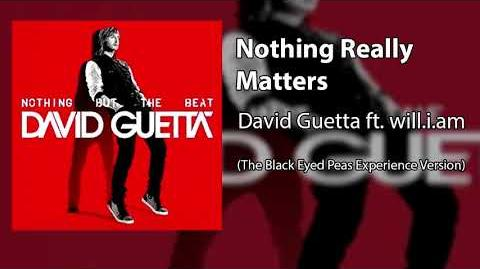 Nothing Really Matters (The Black Eyed Peas Experience Version)