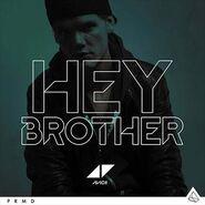 Avicii Hey Brother