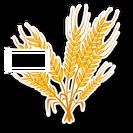 WheatSkin